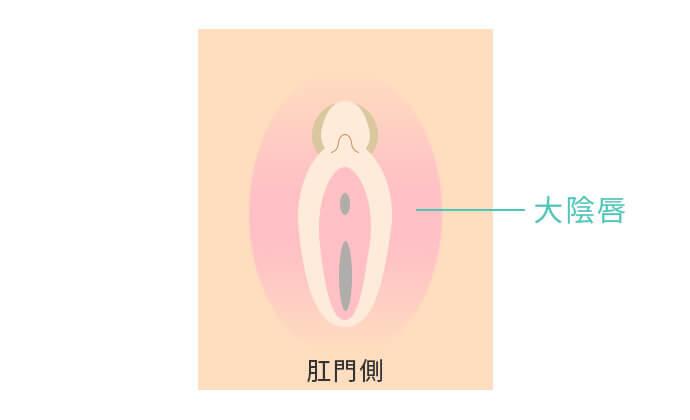 大陰唇の縮小